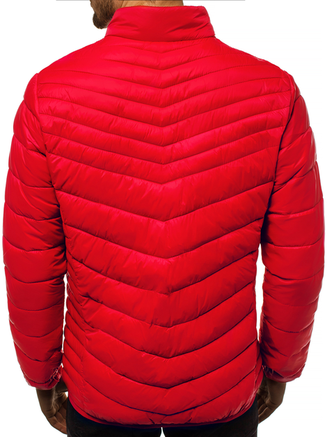 Men's Jacket - Red OZONEE JB/JP1137