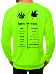 Men's Sweatshirt - Green neon OZONEE MACH/3149